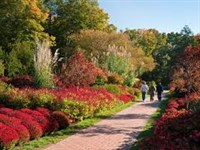 Autumn's Colors at Longwood Gardens